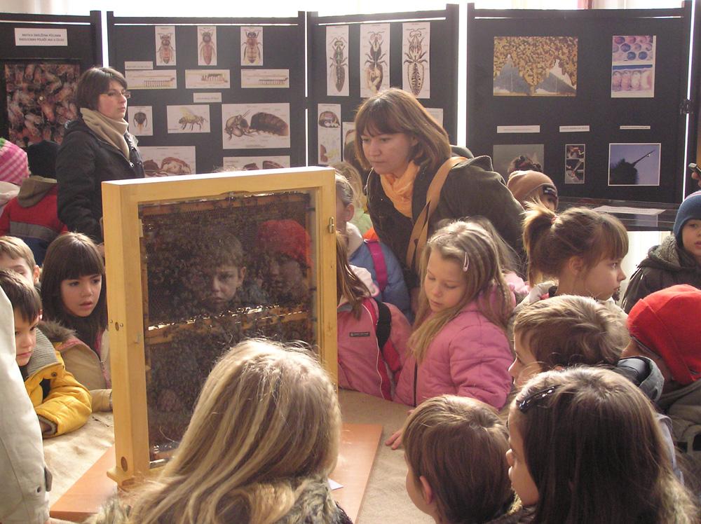 Djeca, mladi i svijet pčela